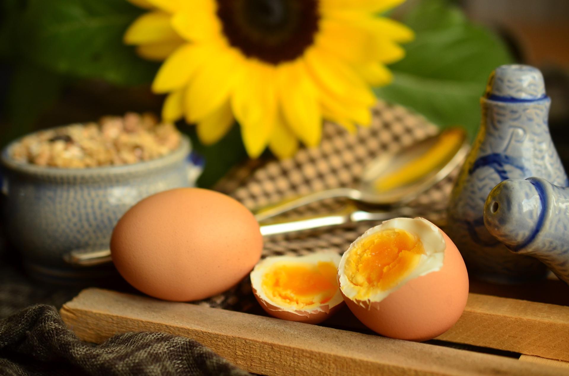 egg er viktig for proteiner
