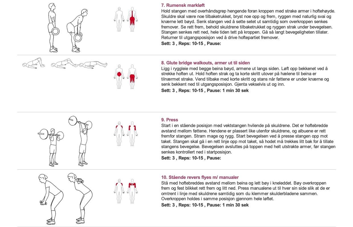 Treningsprogram for muskelvekst